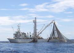 極洋水産様インタビュー写真